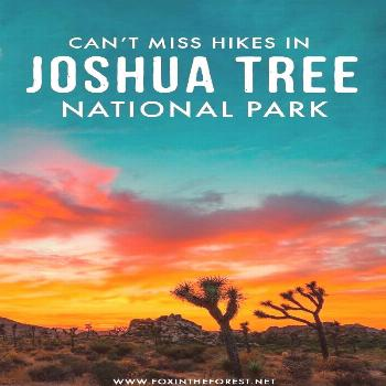 5 Can't-Miss Hikes in Joshua Tree National Park Planning a trip to Joshua Tree National Park? Wheth