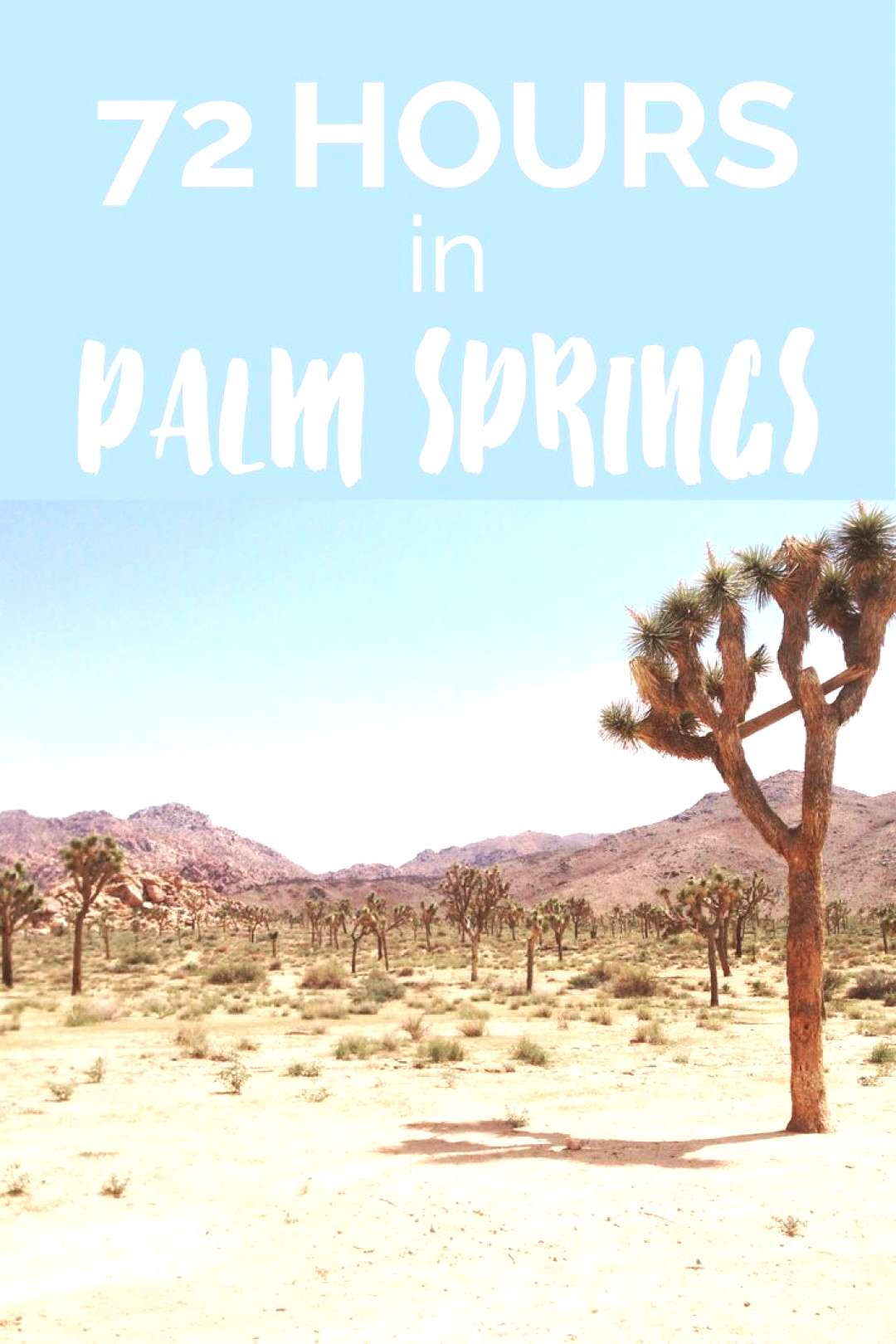 72 Hours in Palm Springs   What Do, See + Eat   