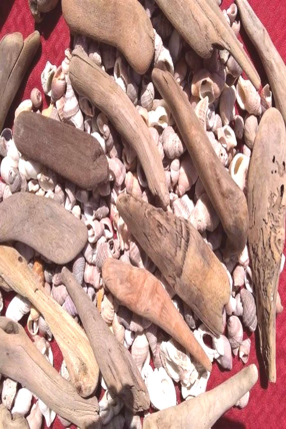 75+ small pieces of driftwood 1/2 quot-4quot pieces, high quality driftwood! Of course, check our reviews