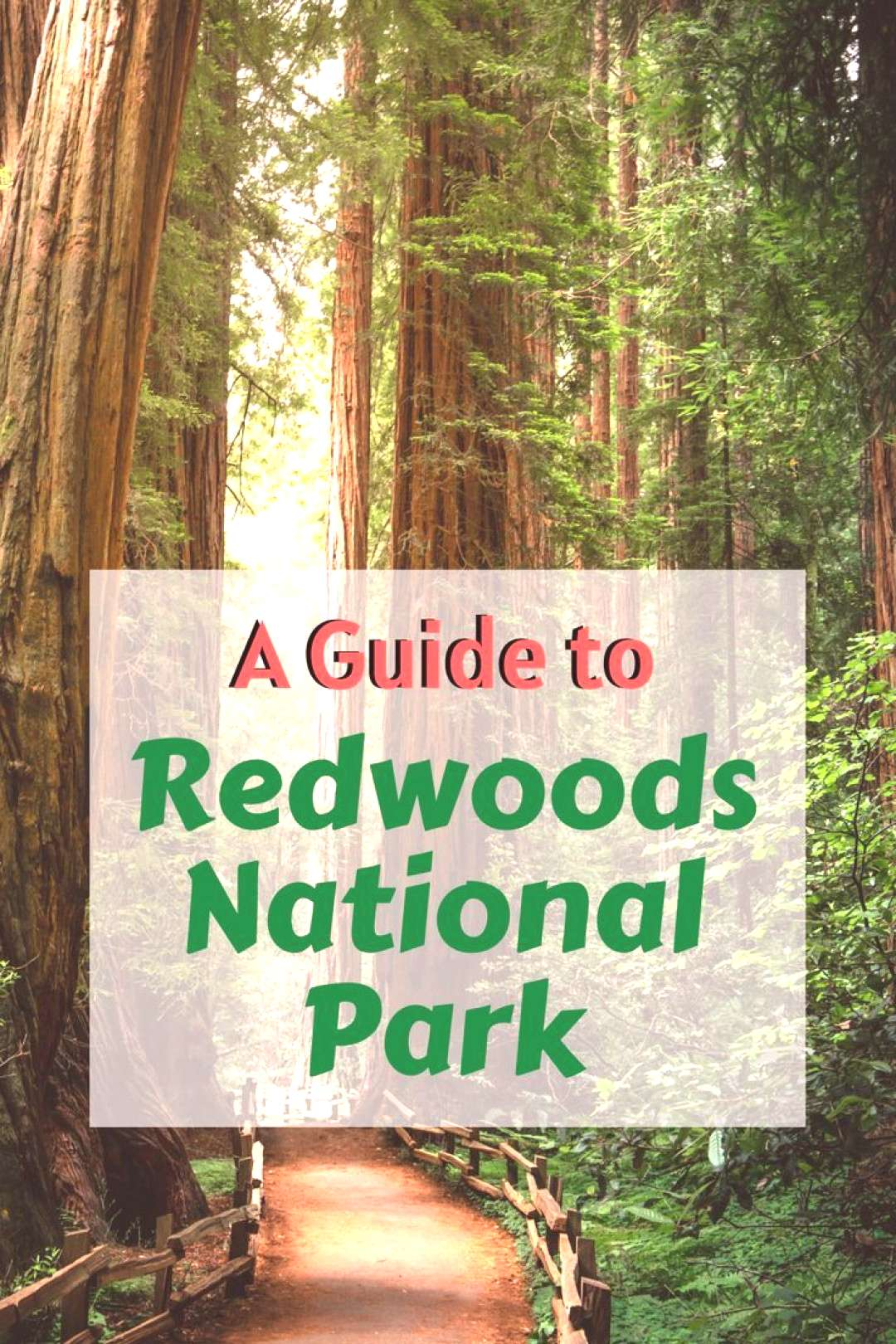 A Guide to Redwoods National Park Read all about the in Northern California, with information about