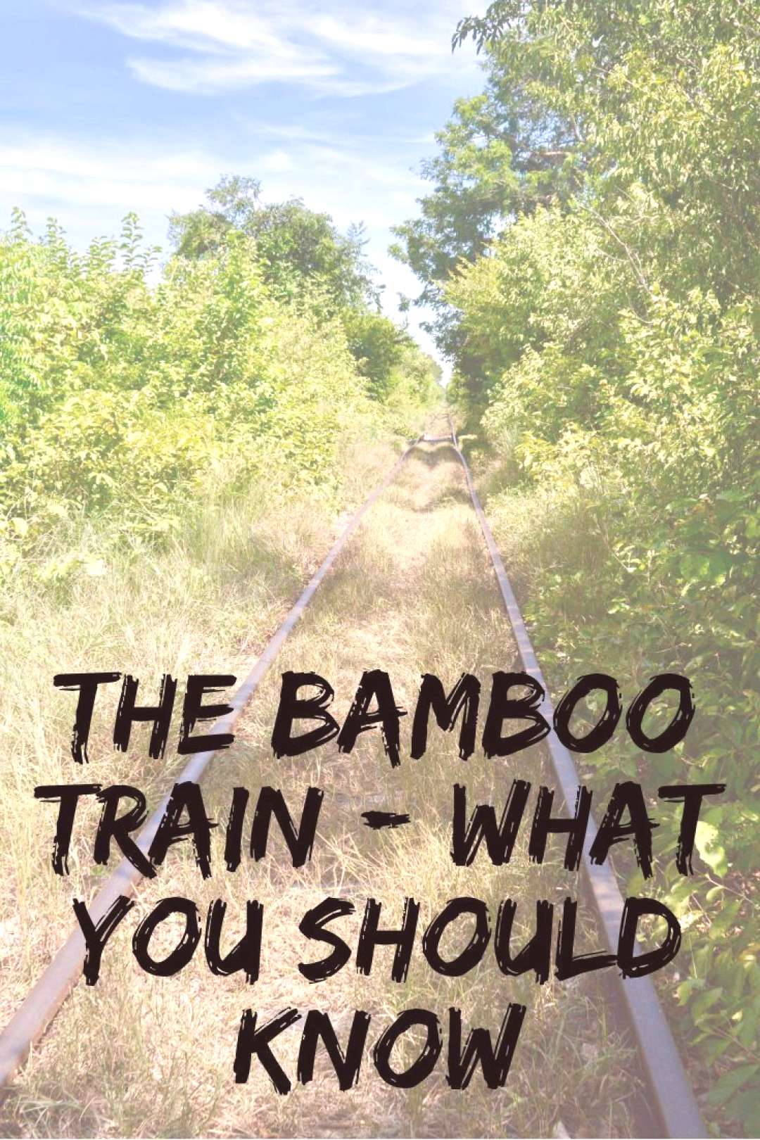Did you know there is a train made of bamboo in Cambodia?? Check out our blog here The Bamboo Trai