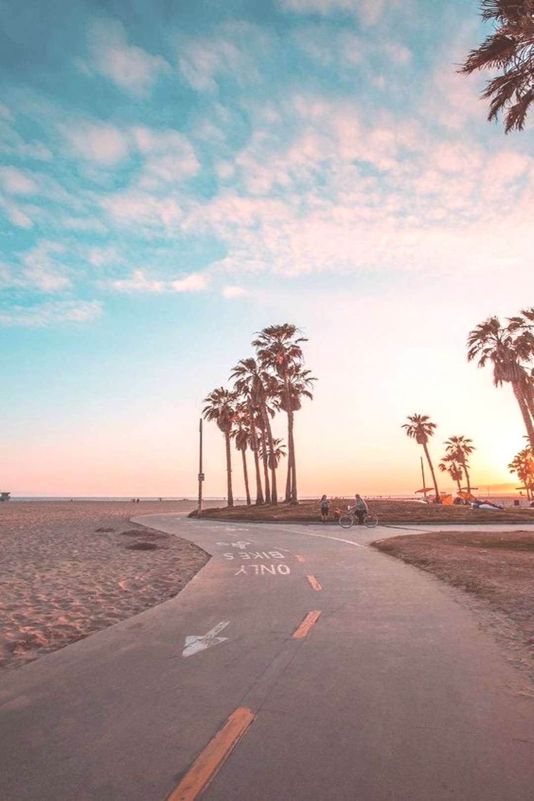How to survive a California winter - How to survive a California winter survived -