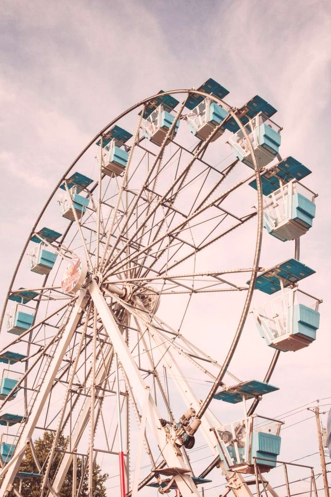 Savoring Moments from the County Fair - -