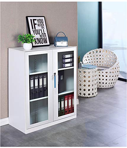 Small Size Office Cabinet White Color with Two Layer