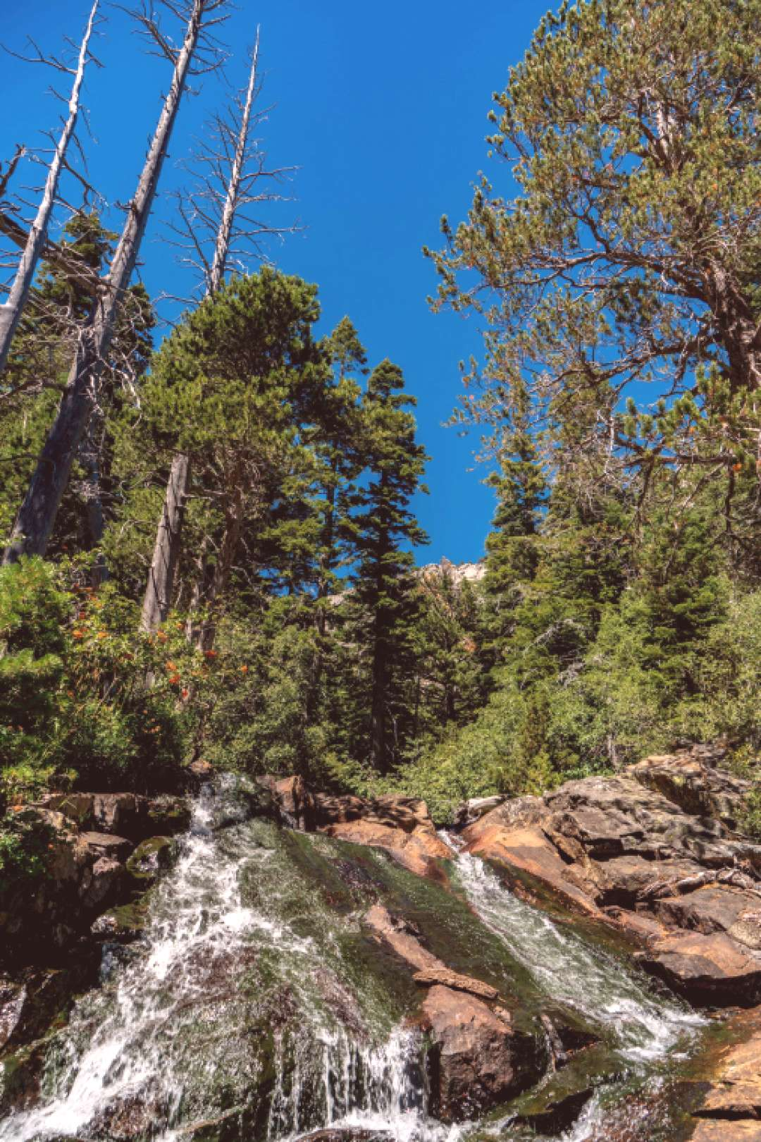 Tahoe Eagle Falls - Lake Tahoe is a great place for hiking even for those who casually hike! Here a