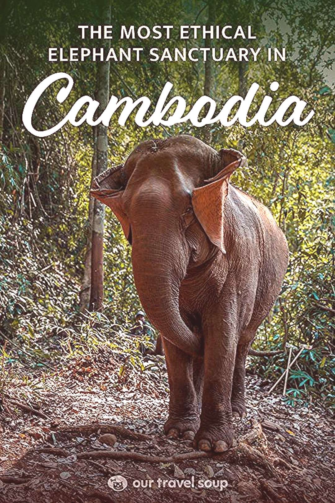 The Mondulkiri Project is an ethical elephant sanctuary in Sen Monorom Cambodia. Roam the jungle an